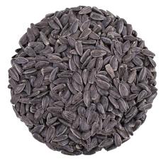 schwarze-sonnenblumenkerne